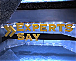 Experts-Say-Logo-for-Web-PNG